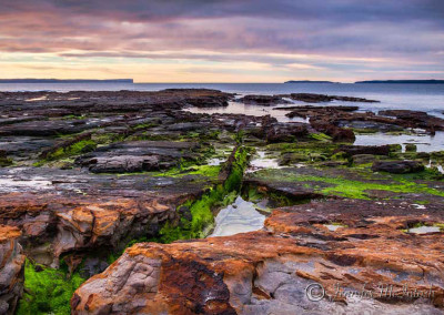 Revealed – Plantation Point, Jervis Bay